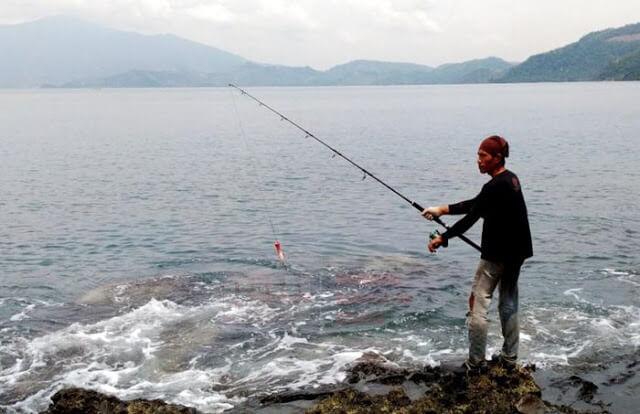 Umpan ikan di laut dangkal