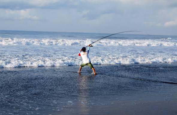 Umpan mancing laut dangkal