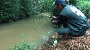 Cara mancing ikan di sungai