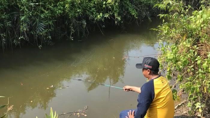 Tips mancing di sungai