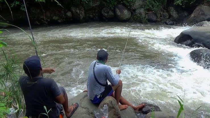 Umpan Mancing Di Sungai Air Deras