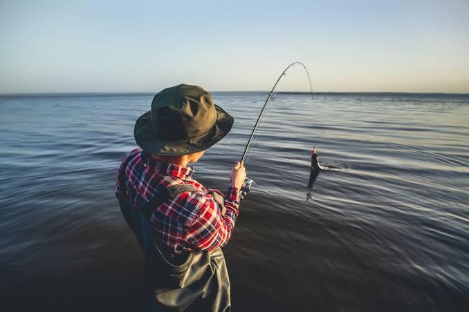 Umpan ikan laut pinggiran