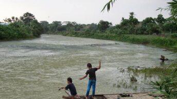 Umpan Ikan Sungai Air Deras