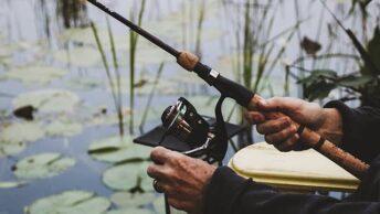 Jam makan ikan di sungai